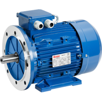 6T2 71C2 electric motor, 3000 RPM, 0.75kW